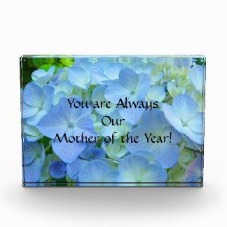 Always Mother of the Year Award Floral Wall Plaque