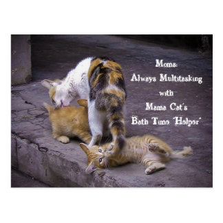 Always Multitasking: Mama Cat's Bath Time Helper Postcard
