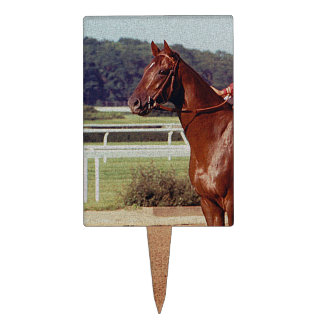 Alydar Belmont Stakes 1978 Cake Toppers