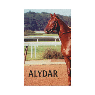 Alydar Belmont Stakes 1978 Gallery Wrapped Canvas