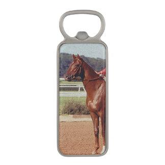Alydar Belmont Stakes 1978 Magnetic Bottle Opener