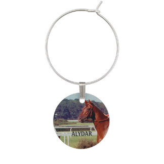 Alydar Belmont Stakes 1978 Wine Charms