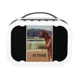 Alydar Belmont Stakes 1978 Yubo Lunchboxes
