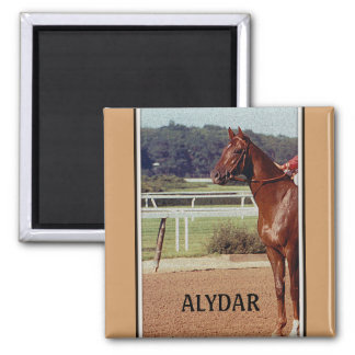 Alydar Belmont Stakes Post Parade 1978 2 Inch Square Magnet