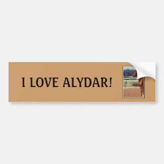 Alydar Belmont Stakes Post Parade 1978 Bumper Sticker