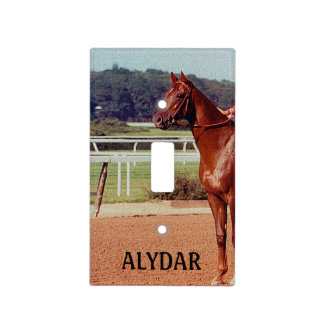 Alydar Belmont Stakes Post Parade 1978 Light Switch Cover