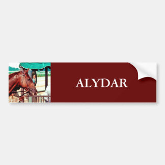 Alydar Thoroughbred 1979 Bumper Sticker