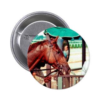Alydar Thoroughbred 1979 2 Inch Round Button