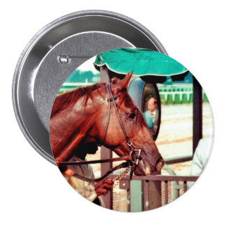 Alydar Thoroughbred 1979 Button