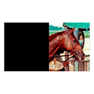 Alydar Thoroughbred 1979 Double-Sided Standard Business Cards (Pack Of 100)