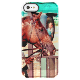 Alydar Thoroughbred 1979 Uncommon Permafrost® Deflector iPhone 5 Case