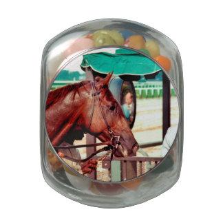 Alydar Thoroughbred 1979 Jelly Belly Candy Jar