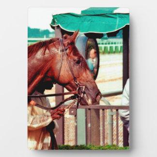 Alydar Thoroughbred 1979 Plaque