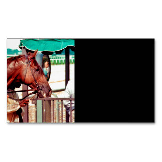 Alydar Thoroughbred 1979 Magnetic Business Cards