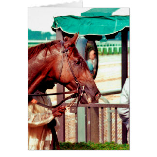 Alydar Thoroughbred Racehorse 1979 Greeting Card