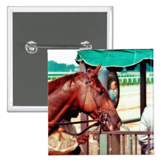 Alydar Thoroughbred Racehorse 1979 Pinback Button