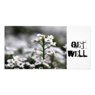 ¡alyssum blanco cristalino claro, GetWell! Tarjetas Fotográficas