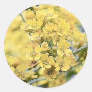 Alyssum del oro - Perennial Pegatinas Redondas