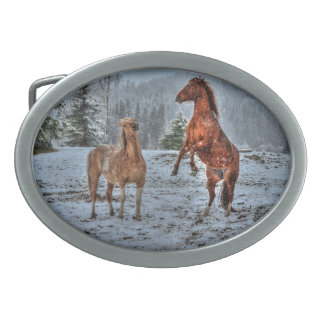 Alzar el caballo y el semental del invierno en el  hebillas de cinturón ovales
