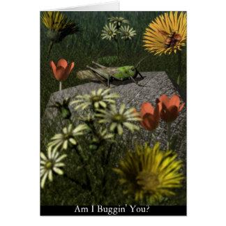 Am I Buggin' You? Greeting Card