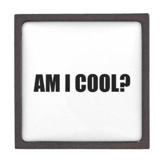 Am I Cool Gift Box
