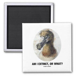 Am I Extinct, Or What? (Dodo Bird Portrait) 2 Inch Square Magnet