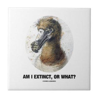 Am I Extinct, Or What? (Dodo Bird Portrait) Ceramic Tile