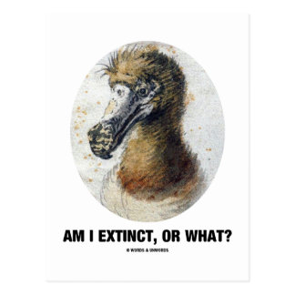 Am I Extinct, Or What? (Dodo Bird Portrait) Post Card