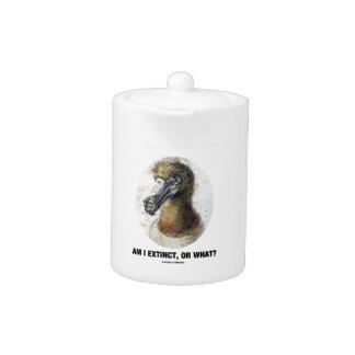 Am I Extinct, Or What? (Dodo Bird Portrait) Teapot