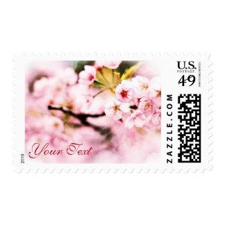 Amabilidad de la naturaleza de la primavera de las envio