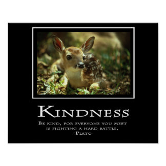 Amabilidad Poster