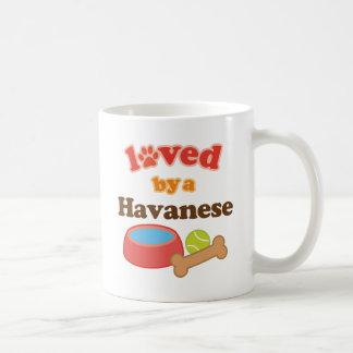 Amado por un Havanese (raza del perro) Tazas