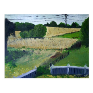 Amagansett Field Postcard