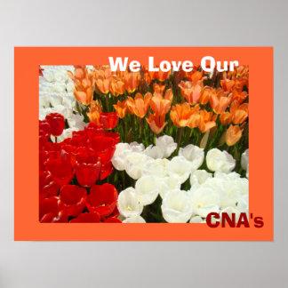 Amamos las flores anaranjadas del tulipán de los p impresiones