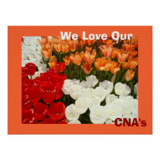 Amamos las flores anaranjadas del tulipán de los p póster