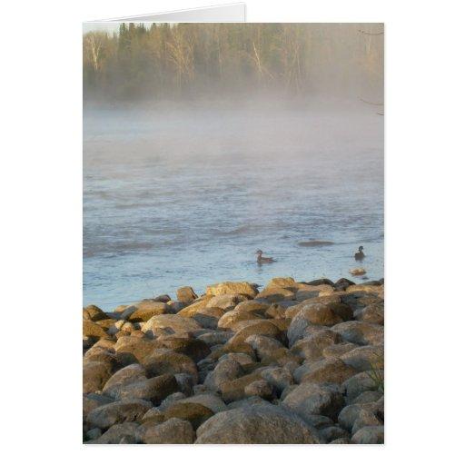 Amanecer del pato del pato del río Misisipi Tarjeta De Felicitación