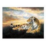 Amanecer del tigre tarjeta postal