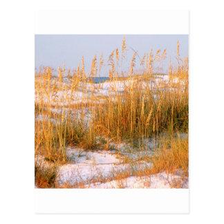 Amanecer Destin de las dunas de la playa Postales
