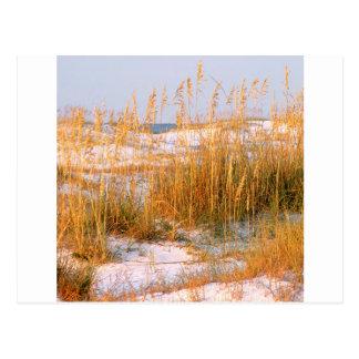 Amanecer Destin de las dunas de la playa Postal