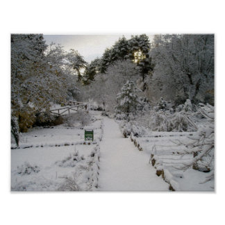 Amanecer Nevado Poster