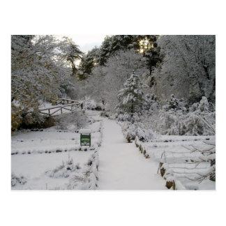 Amanecer Nevado Postales