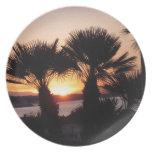 AMANECER: Salida del sol, a través de las palmeras Plato De Comida