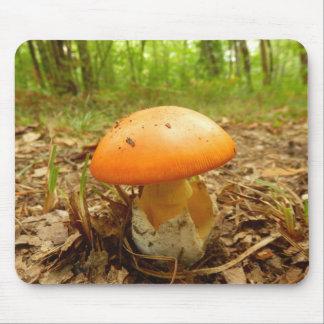 Amanita Caesarea Mushroom Mouse Mat