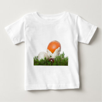 Amanita Caesarea mushroom Tee Shirt
