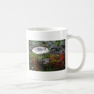 Amanita del Polvo-Casquillo Taza De Café