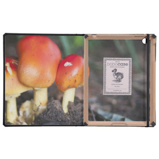 Amanita family mushroom cover for iPad