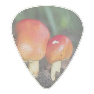 Amanita family mushroom acetal guitar pick