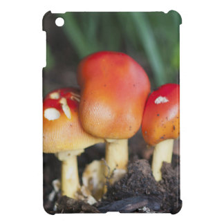 Amanita family mushroom case for the iPad mini