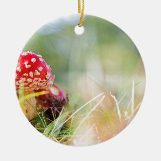 Amanita muscaria ceramic ornament