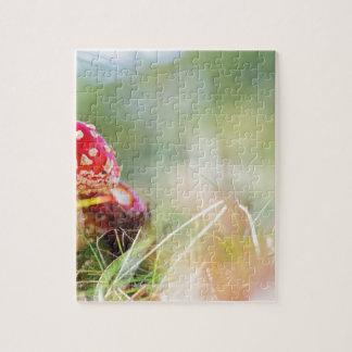 Amanita muscaria jigsaw puzzle